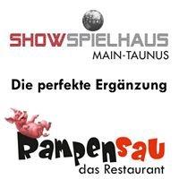 ShowSpielhaus Main-Taunus