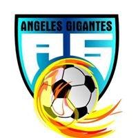 Liga de Futbol 7 Asociados FC