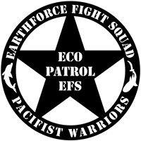 Earthforce FS / Pacifist Warriors-Asian East Indies