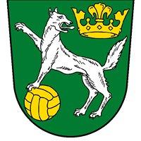 SV Wolfersgrün/Neuengrün