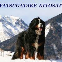 ペットと泊まれる宿 八ヶ岳・清里高原 ペンション バーニーズ(Kiyosato Bernese)