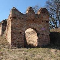 Zamek w Dankowie