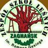 Zespół Szkół Leśnych im. Romana Gesinga w Zagnańsku