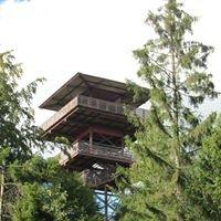 Wieżyca - Wieża Widokowa