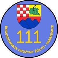 111 Boguszowskie Drużyny Żółto-Niebieskie