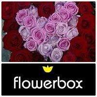 Flowerbox  - kwiaty w pudełkach, kwiaciarnia Wałbrzych