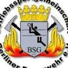 BSG Berliner Feuerwehr - Volleyball