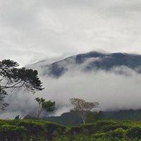 Gunung Gede Pangrango National Park