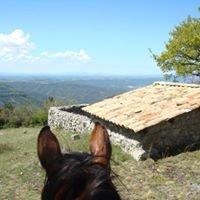 Randonnées Equestres Sophie DUCCA