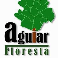 AguiarFloresta