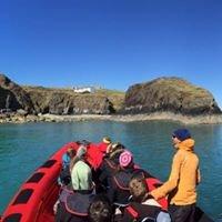 Blue Ocean Adventures, Ramsey Island Wildlife Boat Trips