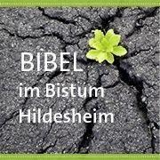 Bibel im Bistum Hildesheim