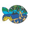 Coralina y la Reserva de Biosfera Seaflower
