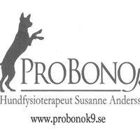 ProBono K9