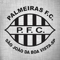 Palmeiras Futebol Clube