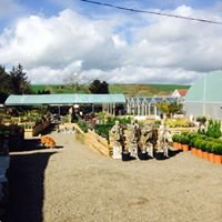 Manorbier Garden Centre & The Potting Shed Tea Room