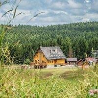 Góra Dzikowiec