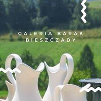 Galeria Barak-Bieszczady