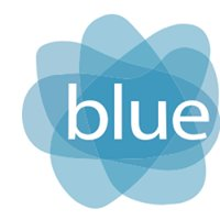 Blue Fusion Solutions