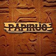 PAPIRUS BIURO-SERWIS
