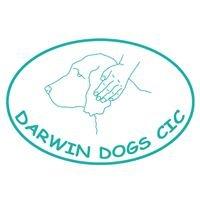 Darwin Dogs CIC