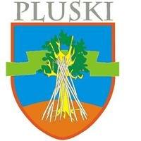 Sołectwo Pluski - Rybaki