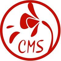 CMS at NYU