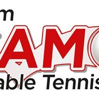 Nottingham Sycamore Table Tennis Academy