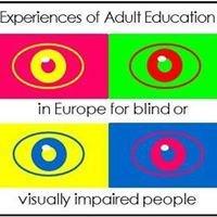 Edukacja dorosłych osób niewidzących i słabowidzących