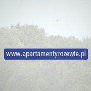 Apartamenty Rozewie - Aparthotel