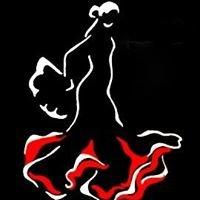 Tierra Flamenca Szkoła Tańca Orientalnego i Flamenco