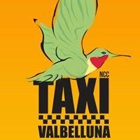 Taxi Valbelluna di Matteo Crotti