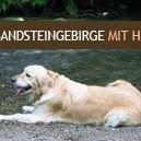 Elbsandsteingebirge mit Hund