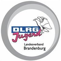 DLRG Landesjugend Brandenburg