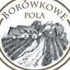Borówkowe Pola