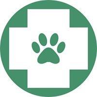 VitaVet Rehabilitacja Zwierząt