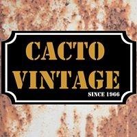 Cacto Vintage