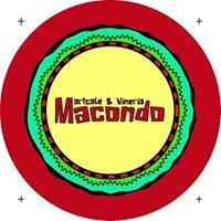 Artcafé & Vineria Macondo