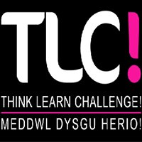 Think Learn Challenge