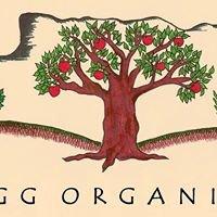 Eigg Organics