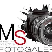 MS Fotogalerie