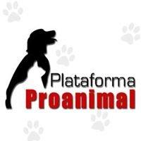 Plataforma Proanimal /oficial