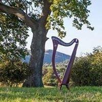 Telynau Tandderwen Harps