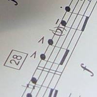 Istituto Comprensivo a Indirizzo Musicale T. Mommsen - Roma
