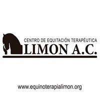 Equinoterapia Limon A.C.