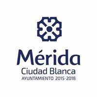 Desarrollo Social Mérida