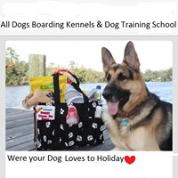 All Dogs Boarding Kennels & Dog Training School