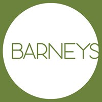 Barney's Toddler Groups