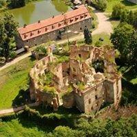 Zamek w Owieśnie /Owiesno Castle