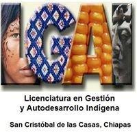 Licenciatura en Gestión y Autodesarrollo Indígena